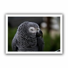 'Parrot' by Lindsey Janich Canvas Poster
