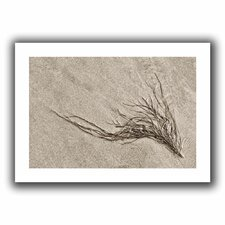 'Beach Find I' by Cora Niele Canvas Poster