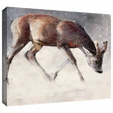 'Roe Buck' by Mark Adlington Print of Painting Gallery-Wrapped on Canvas