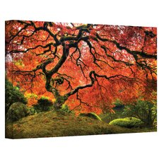 <strong>Art Wall</strong> John Black ''Japanese Tree'' Canvas Art