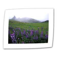 "Kathy Yates ""Figueroa Mountain with Fog"" Canvas Wall Art"