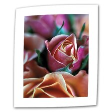 "Kathy Yates ""Mauve and Peach Roses"" Canvas Wall Art"