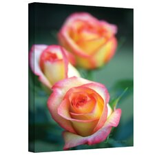 Kathy Yates ''Rose Trio'' Canvas Art