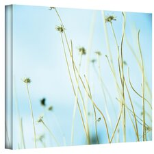 ''30 Second Daydream'' by Mark Ross Photographic Print on Canvas