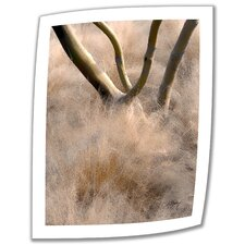 <strong>Art Wall</strong> Linda Parker 'Desert Grasses' Unwrapped Canvas Wall Art
