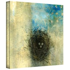 'Bird Nest' by Elena Ray Photographic Print on Canvas