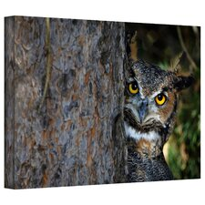 David Liam Kyle 'Peering' Gallery-Wrapped Canvas Wall Art