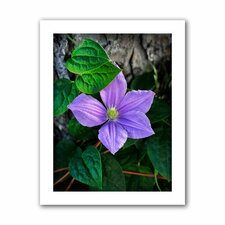 David Liam Kyle 'Flower' Unwrapped Canvas Wall Art