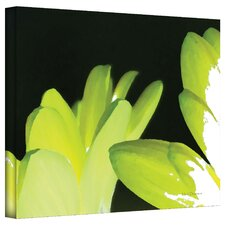 <strong>Art Wall</strong> Herb Dickinson 'Gerber Time I' Unwrapped Canvas Wall Art