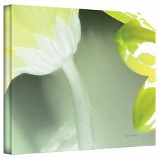 <strong>Art Wall</strong> Herb Dickinson 'Gerber Time II' Gallery-Wrapped Canvas Wall Art