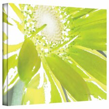Herb Dickinson 'Gerber Time IV' Unwrapped Canvas Wall Art