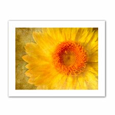 'Flowers in Focus I' by David Liam Kyle Graphic Art Canvas