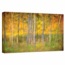 David Liam Kyle 'Into the Wood' Gallery-Wrapped Canvas Wall Art