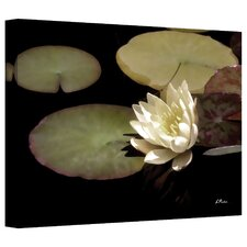 'Waterlily I' by Linda Parker Photographic Print on Canvas