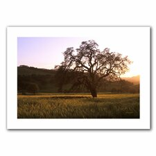 <strong>Art Wall</strong> Kathy Yates 'Golden Hour' Unwrapped Canvas Wall Art