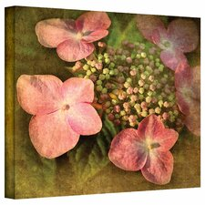 'Pretty in Pink' by David Liam Kyle Photographic Print on Canvas