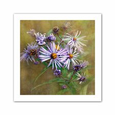 David Liam Kyle 'Flowers in Focus VI' Unwrapped Canvas Wall Art