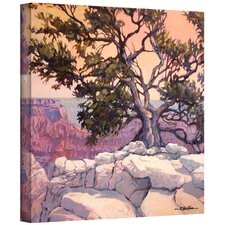 'North Rim Tree' by Rick Kersten Photographic Print on Canvas