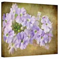 'Shades of Violet' by David Liam Kyle Photographic Print on Canvas