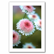 Kathy Yates 'Pincushion Flowers' Unwrapped Canvas Wall Art