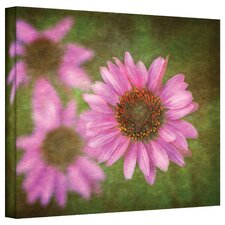 <strong>Art Wall</strong> David Liam Kyle 'Flowers in Focus III' Gallery-Wrapped Canvas Wall Art