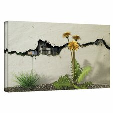 Cynthia Decker 'Between the Cracks' Gallery-Wrapped Canvas Wall Art