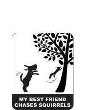 My Best Friend Chases Squirrels Car Magnet