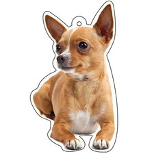 Chihuahua Air Freshener (Set of 3)