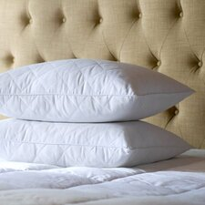 <strong>Sealy</strong> Feather Pillow (Set of 2)