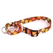 <strong>Yellow Dog Design</strong> Autumn Flowers Martingale Collar