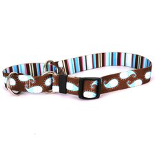 Paisley Martingale Collar