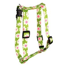 Green Daisy Roman Harness
