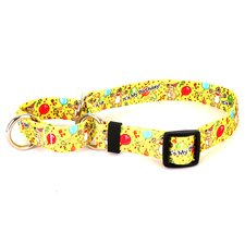 Happy Birthday Martingale Collar