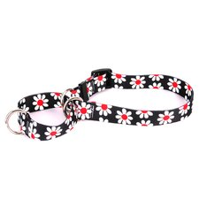 Black Daisy Martingale Collar