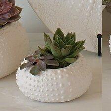Ceramic Urchin Vegetable Bowl