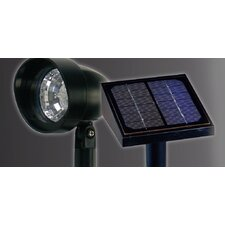 Solar Landscape Spotlights (Set of 3)