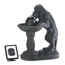 Curious Canine Resin Solar Fountain