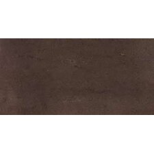 "SGT 24"" x 12"" Porcelain Polished Tile in Mocha"