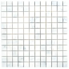 Carrara Extra Marble Mosaic Polished Tile in White