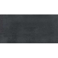 "<strong>Faber</strong> SGT 24"" x 12"" Porcelain Polished Tile in Carbon"