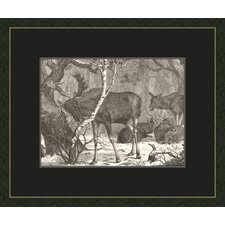 <strong>Melissa Van Hise</strong> Moose In The forest W Black Wall Art