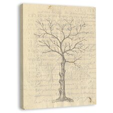 <strong>Melissa Van Hise</strong> Tree Branches I Wall Art