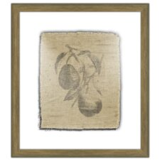 <strong>Melissa Van Hise</strong> Pretty Fruit II Wall Art