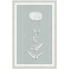 <strong>Melissa Van Hise</strong> White Flora on Spa Linen V Wall Art