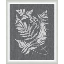 Buckler Ferns Wall Art