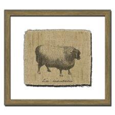 Sheep I Framed Graphic Art