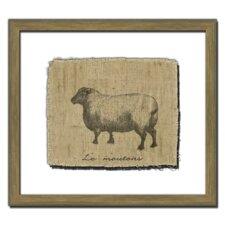Sheep II Framed Graphic Art