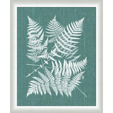 Buckler Fern on Spa Blue Linen Wall Art