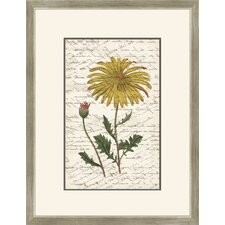 Yellow Flower with Writing I Wall Art