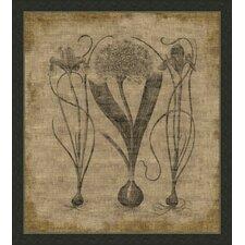 Flora on Linen V Framed Graphic Art